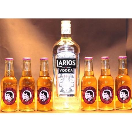 Larios Wodka Triple Distilled 1,00 L und 6 Flaschen Thomas Henry Ginger Ale 0,20 L