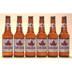 6 x Molson Canadian Lager 0,33 Ltr.
